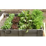 wooden planting box